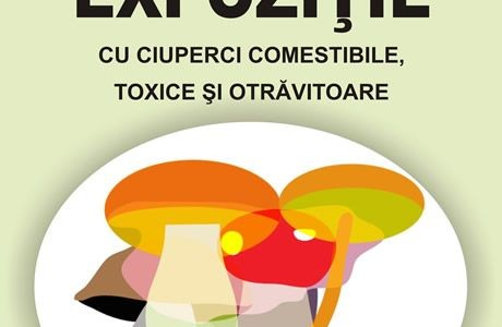 Fresh edible, inedible and toxic mushrooms exhibition