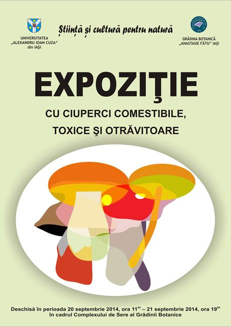 edible, inedible and toxic mushrooms exhibition