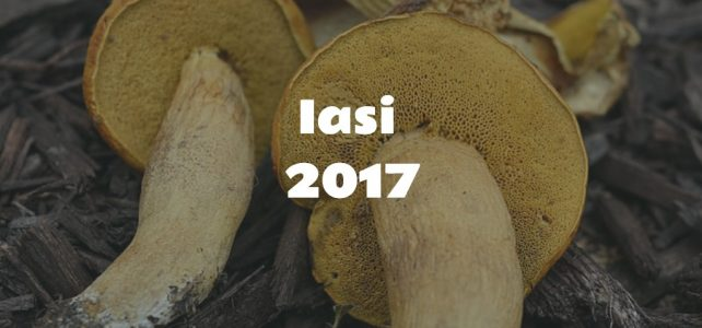 Fungi exhibition at the Iași Botanical Garden (2017) [image gallery]